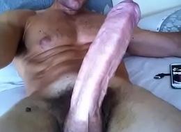 big cock on the bed